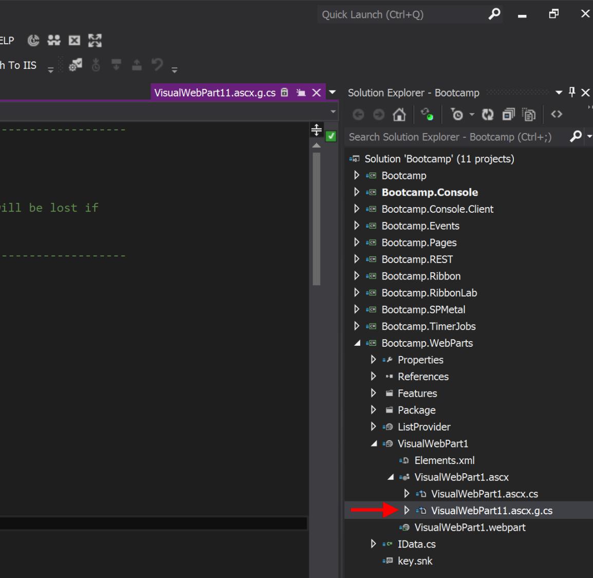 Missing Visual WebPart Designer File
